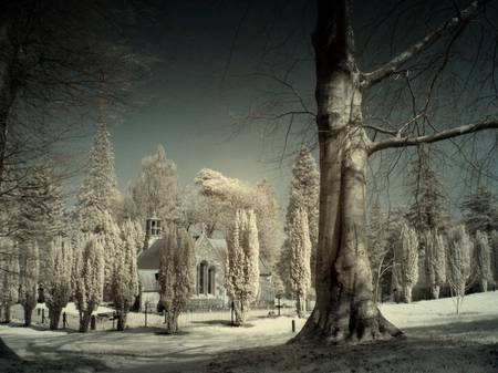 Dawyck Chapel guardians by David Bird