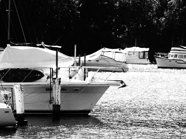 Yachts 2 Grainy Film