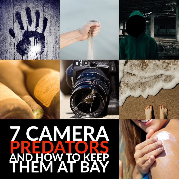 7 Digital Camera Predators and How to Keep them at Bay