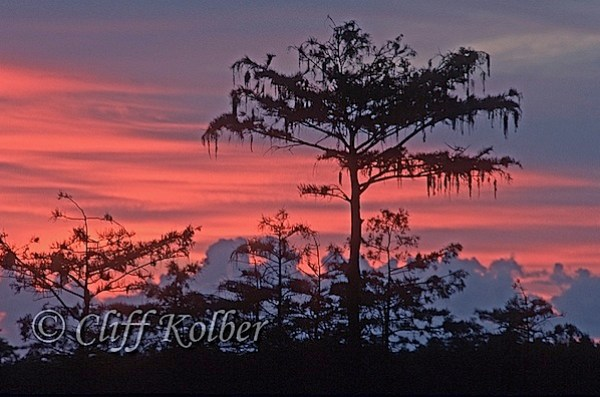 Cliff Kolber_Pahayokee sunrise4.jpg