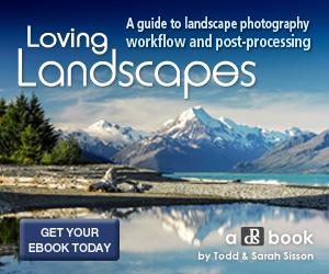lovinglandscapes_300x250