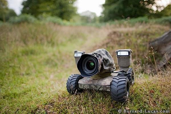beetlecam-1.jpg