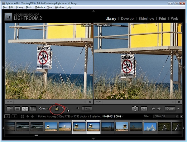 Lightroom Compare View-step5.jpg
