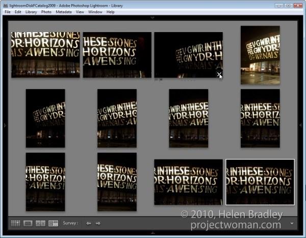 Choosing images using Survey view in Lightroom