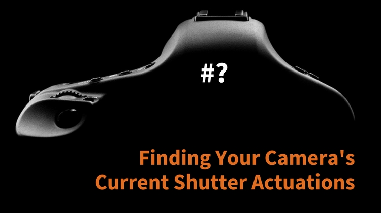 Finding Your Camera's Current Shutter Actuations