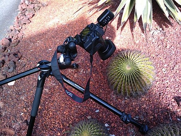 focus-stacking-Photo C.jpg