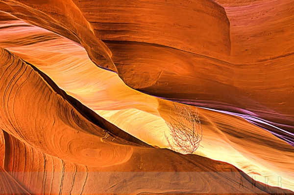 photographing Antelope Canyons 2.jpg