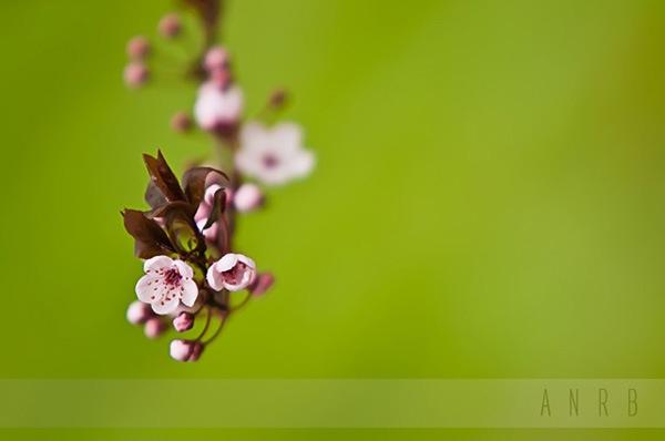 improve-photography-tips-4444.jpg