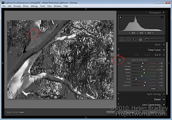 Lightroom-targeted-adjustments.jpg