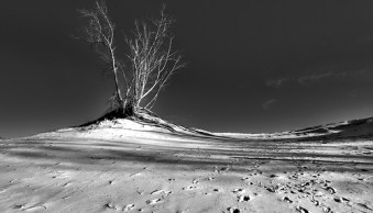 This Week in the Digital Photography School Forums (1-7 May '11)