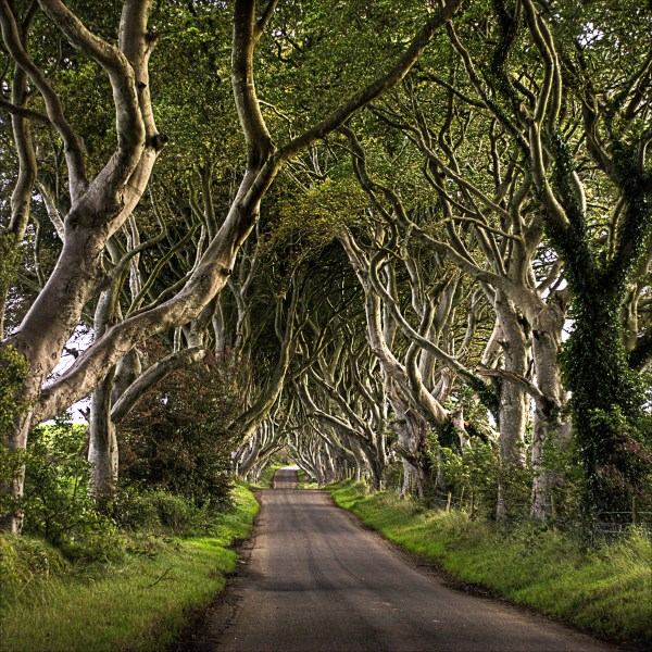 Road Trip! 19 Remarkable 'Road' Images