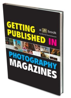 Getting Published_3D book 400.jpg