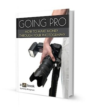 Going Pro_3d book 400.jpg