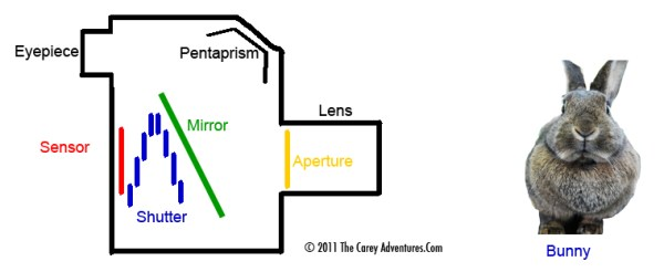 How A Typical DSLR Shutter Works