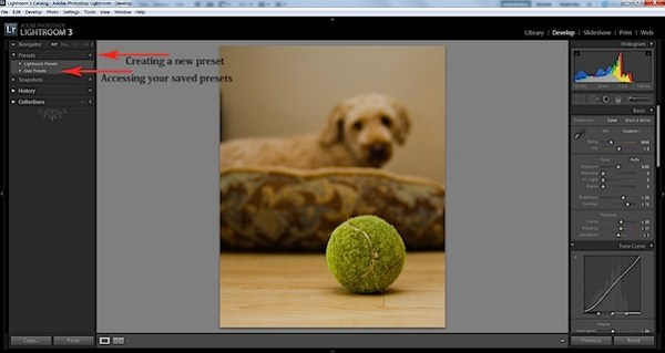 Presets in Lightroom 3.jpg