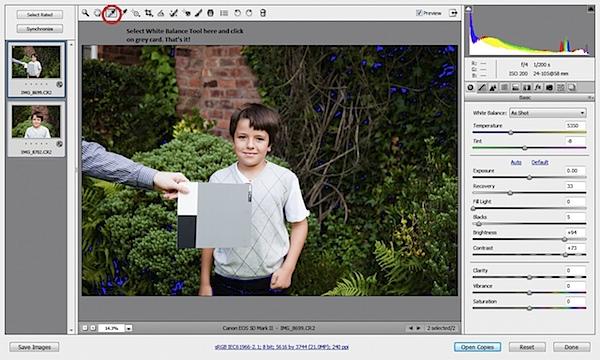 Adobe Camera RAW.jpg