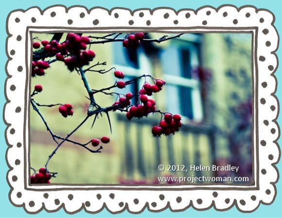 Lightroom_photo_frame_opener.jpg