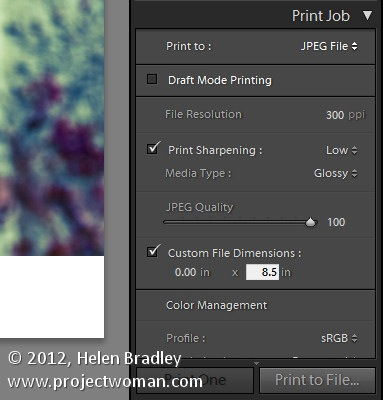 How to Add a Photo Border in Lightroom