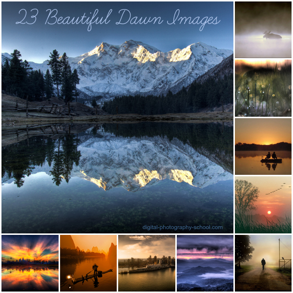 Beautiful Images Taken at Dawn