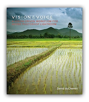 Vision and Voice by David DuChemin [Book Review]
