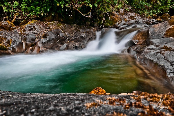 Chirripo Falls