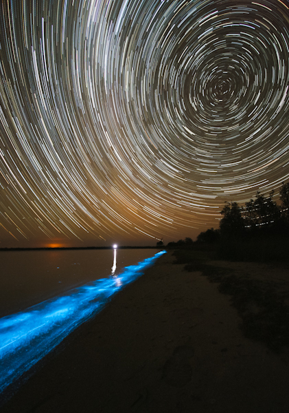 Bioluminescence and Star Trails