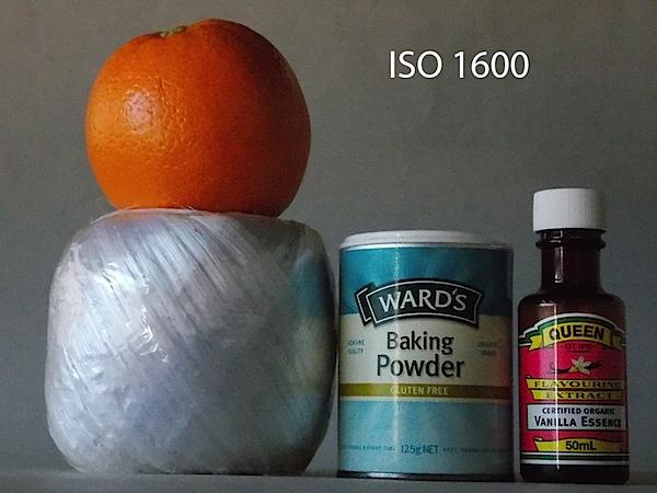 Nikon Coolpix L810 ISO 1600.JPG