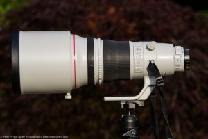 Canon EF 400mm f/2.8L IS II USM [REVIEW]