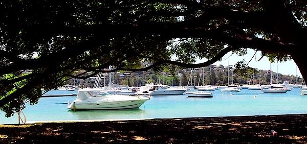 Yachts 14.jpg