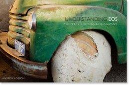 Understanding EOS ebook cover