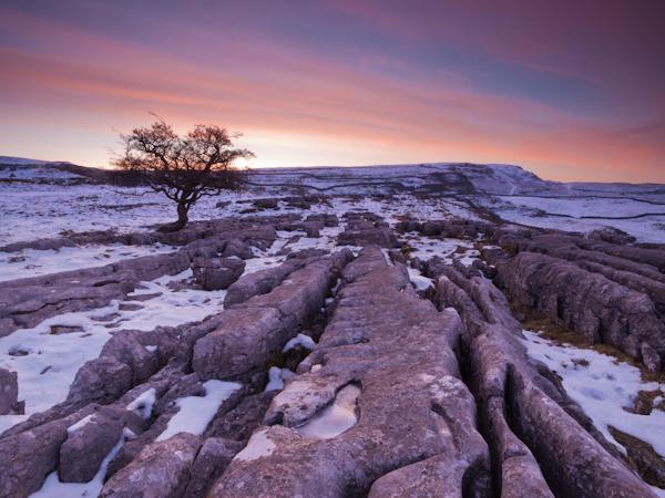 Nascer do sol sobre o pavimento de calcário a uma distância hiperfocal para paisagens nítidas