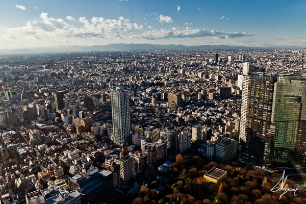 The Tokyo View