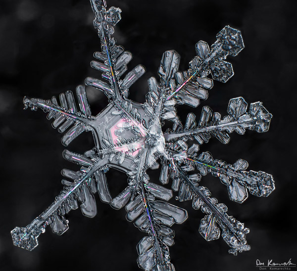 How to Photograph Snowflakes 5