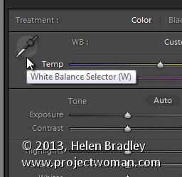 Lightroom white balance 2