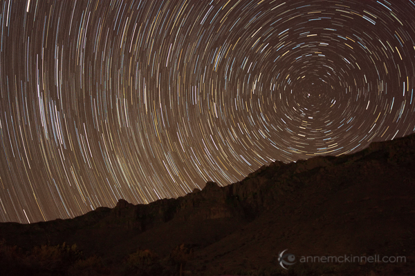 Star trails at Guadalupe National Park, Texas, by Anne McKinnell.