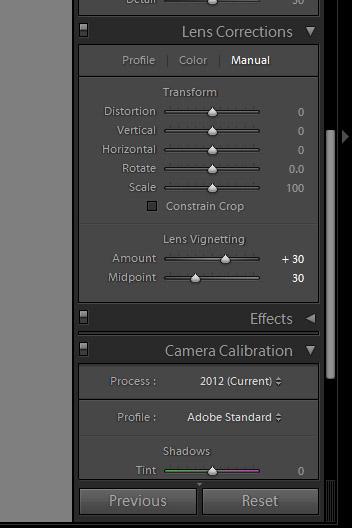lens correction panel