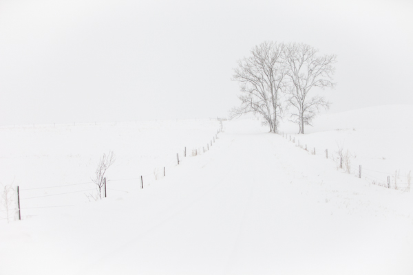©Valerie Jardin ~ You can use a minimalist approach in nature as well as in an urban environment.
