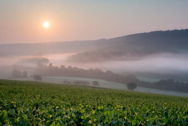Sunrise with mist rolling over landscape
