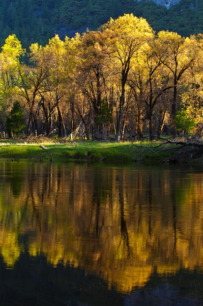"I wanted to capture this image of trees reflected in the Merced, but the water was undulating just enough to cause problems with the reflection. A slower shutter speed helped smooth the ripples and give me a better reflection. EOS 5D Mark III, EF 70-300 f/4-5.6L, ISO 100, f/16, .3""."