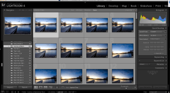 4 Quick Tips to Notice the Supporting Cast of Your Landscape Scene