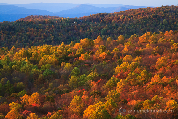 Shenandoah National Park, Virginia, by Anne McKinnell