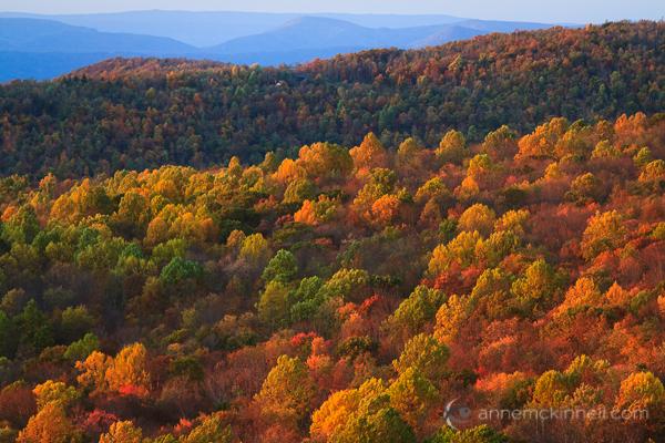 Shenandoah National Park, Virginia, by Anne McKinnell