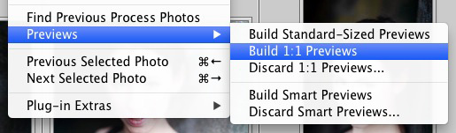 Using DNG in Lightroom
