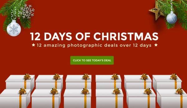 Day 1 of 12 Days of Christmas… Get our Natural Light eBook for $7