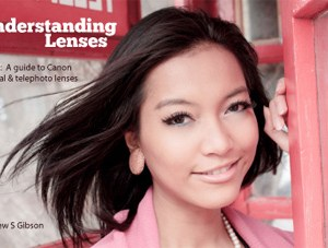 Understanding Lenses ebook