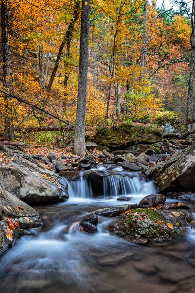 "For this image of Kaaterskill Creek, I knew the small cascade was my main subject.  There were some rocks to create interest in the foreground, and the water creates a nice leading line back to the cascade in the middle ground, and then to the foliage in the background.  EOS 5D Mark III with EF 16-35mm f/2.8L II. I was zoomed into 35mm on this one. Exposure was 1.6"" at f/20, ISO 100."