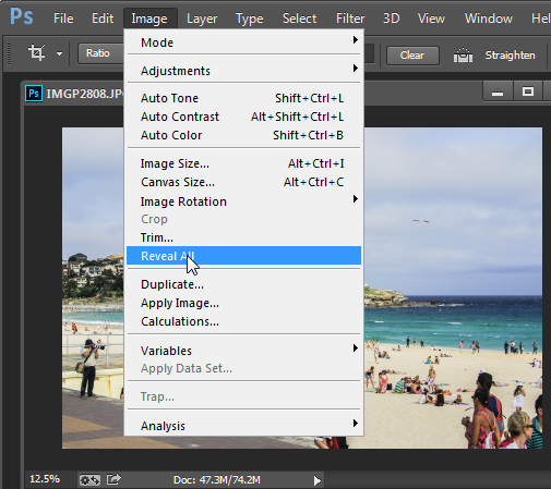 Use Reveal All to display contend hidden when  you crop