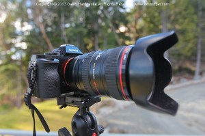 Sony A7R Review with Canon L Lenses