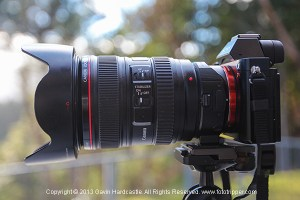 Sony A7R Review and Example Shots