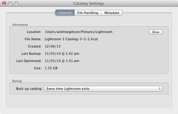 Lightroom Catalog settings